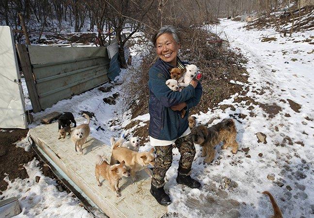 Mulher dedica sua vida a salvar e cuidar de cachorros destinados a virar comida em restaurantes