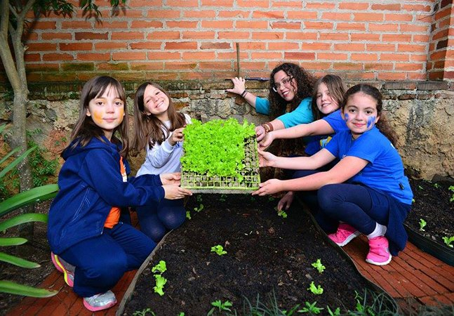 Alunos em escola de Curitiba aprendem a plantar e fazer hortas ao mesmo tempo que praticam o inglês