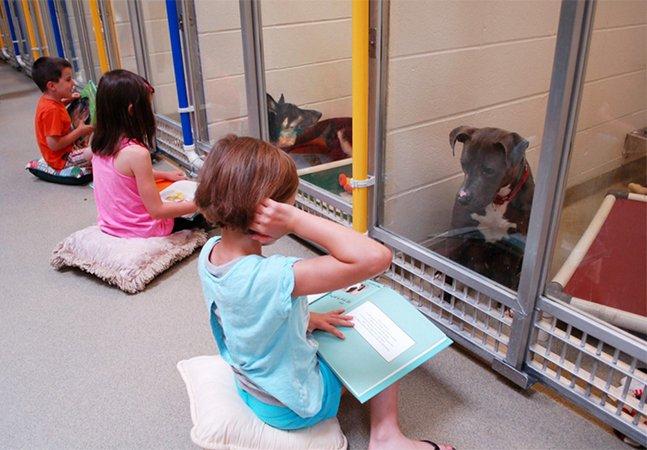 Abrigo convida crianças a ler pra cachorros traumatizados para ajudá-los a interagir com humanos