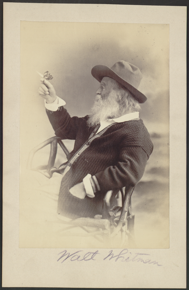 Retrato do poeta americano Walt Whitman, tirado por W. Curtis Taylor em 1877