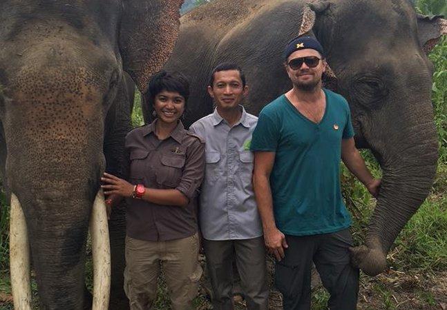 Leonardo DiCaprio não para de ser  maravilhoso e agora está ajudando  a proteger os raros elefantes da Sumatra