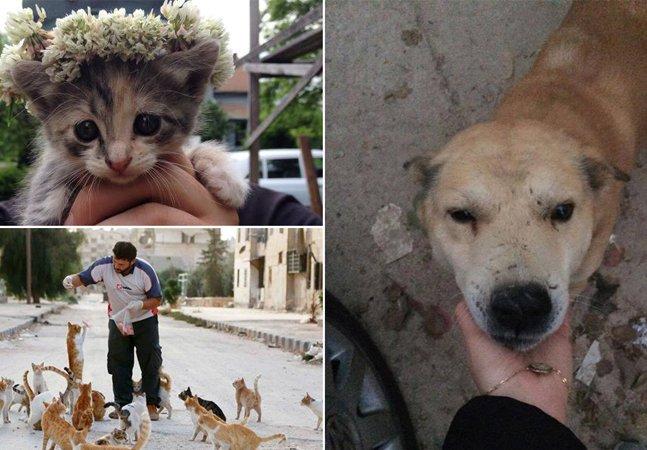 Ativistas se arriscam em zonas  de guerra para resgatar animais  abandonados na Síria
