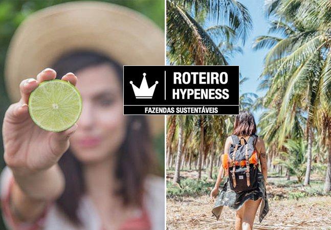 Roteiro Hypeness: um passeio por fazendas sustentáveis de frutas de São Paulo ao Ceará