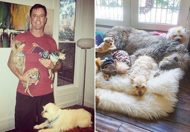 Homem dedica a vida a adotar cachorros idosos que não conseguem achar um lar