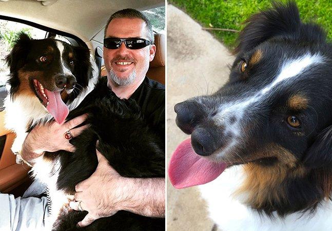 A história do cachorro com 2 narizes que ninguém queria e que foi salvo de uma morte certa