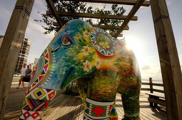 amarula_elephantparade (4)