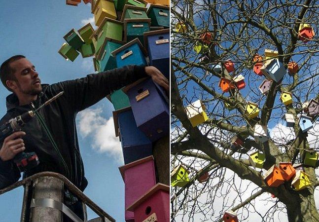 Esse cara construiu mais de 3 mil casas  de passarinho para estimular  aves a ficarem na cidade