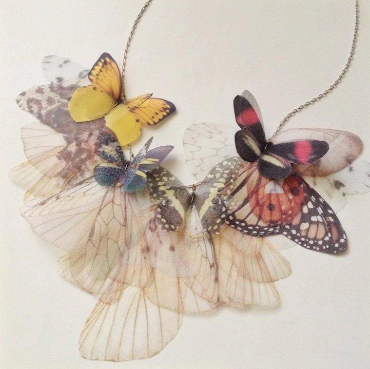 borboleta4