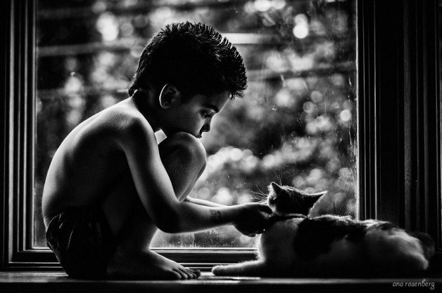boy-and-his-pets-12__880