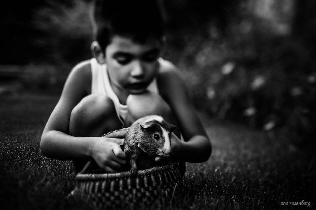 boy-and-his-pets-2__880