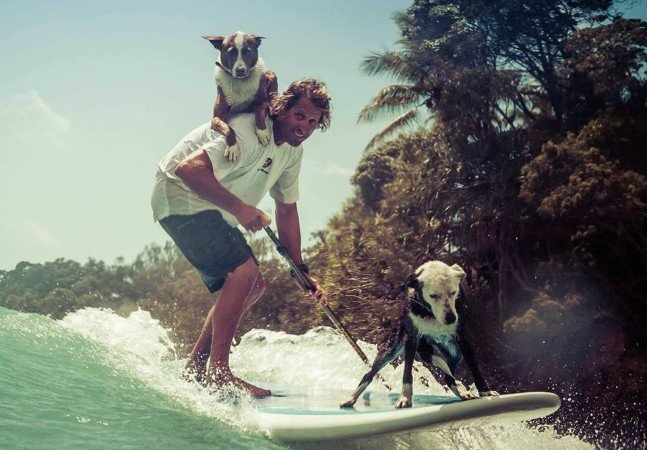 Ele descobriu uma maneira  inusitada de adestrar cães