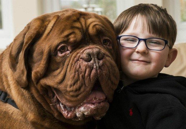 Cão percebeu muito antes dos  humanos que seu dono estava com  problemas no olho e passou a guiá-lo