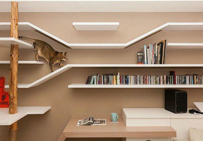 Essa estante será perfeita para  os seus gatos, quer dizer, livros
