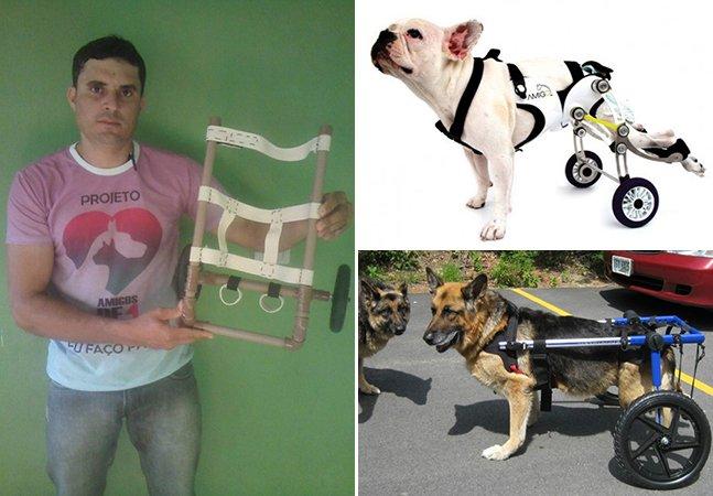 Brasileiro cria cadeira de rodas para cães com deficiência sem cobrar nada