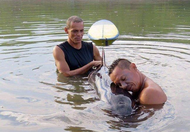 Surfistas ouvem choro de bebê baleia e passam 6 horas em missão de salvamento tocante
