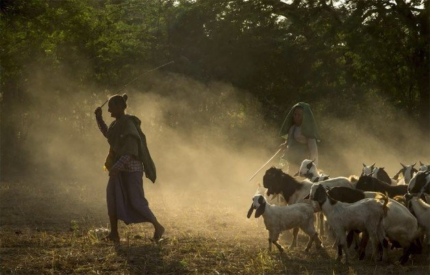 national-geographic-style-photography-tips-bob-holmes-1