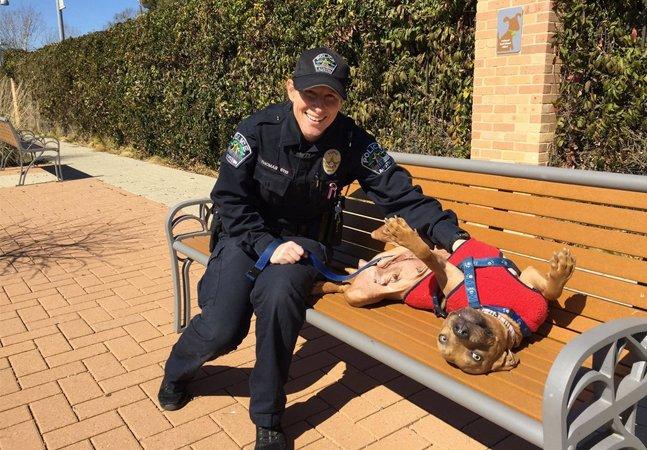 Policiais usam horário de almoço para levar cães de abrigo para passear