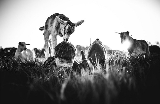 raw-childhood-without-electronic-devices-niki-boon-new-zealand-2