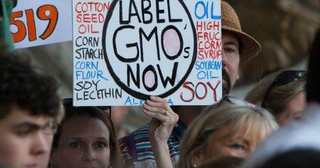 Ativistas da FWW pedem alertas sobre OGMs nos rótulos