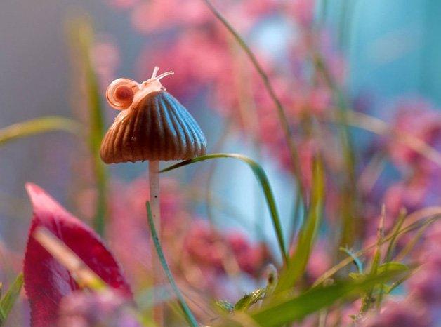 In-My-Wonderland-5729aead11ed2__880