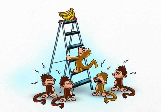 'Sempre foi assim': experiência com macacos vira incrível metáfora para o comportamento da nossa sociedade
