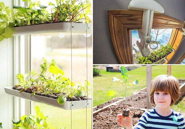 O incrível produto que transforma janelas em hortas verticais em poucos minutos