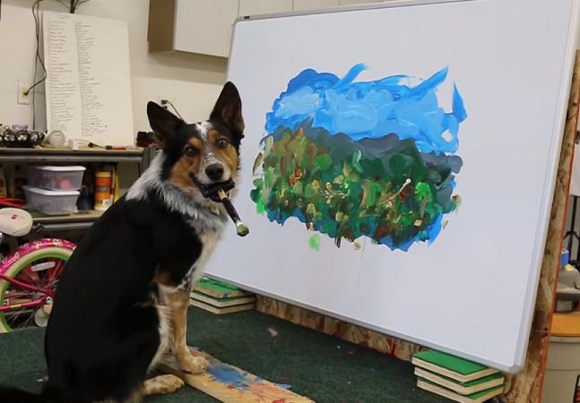 Conheça Jumpy, o cão que pinta quadros  impressionistas e anda de skate
