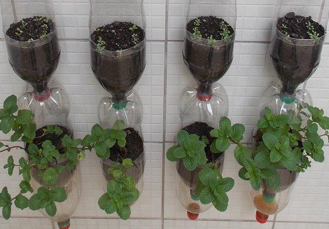 Manual traz passo-a-passo de como montar horta vertical com  sistema próprio de irrigação