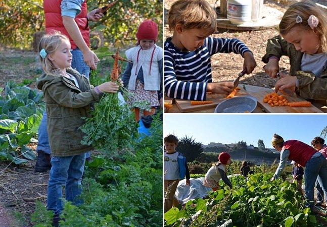 São Francisco ganha escola-fazenda inovadora que ensina crianças a plantar sua própria comida