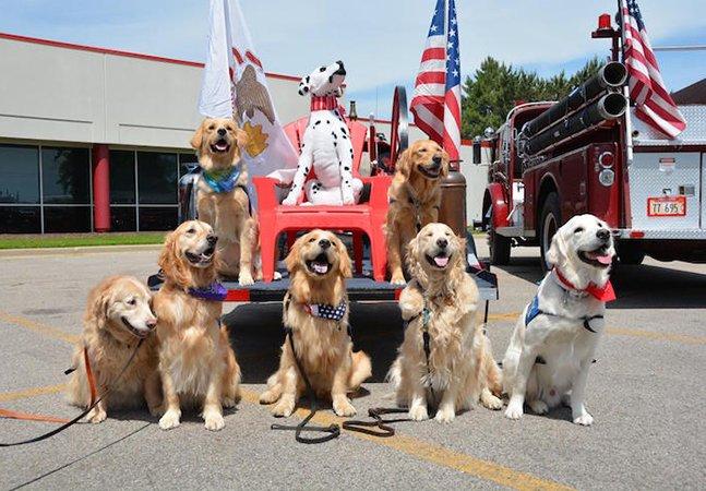 Estes cachorros foram pra Orlando para confortar sobreviventes e familiares de vítimas do atentado