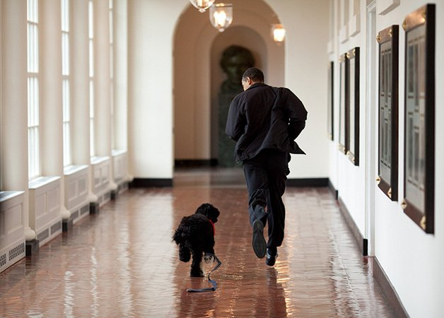 barack-obama-photographer-pete-souza-white-house-41-5763e3b5a6af1__880