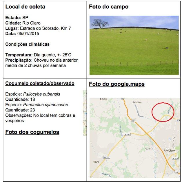 mapa-cogumelo-Brasil