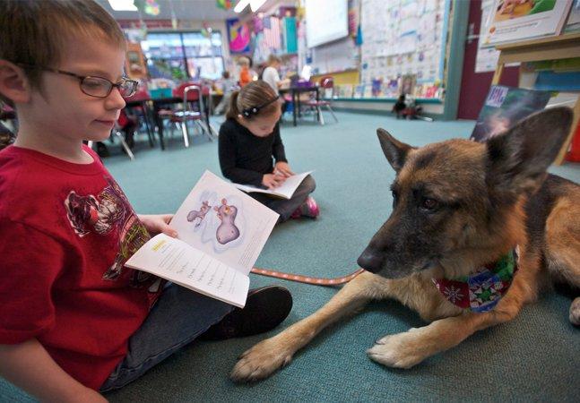 Projeto inovador leva cães  às salas de aula para ajudar  no processo de aprendizagem