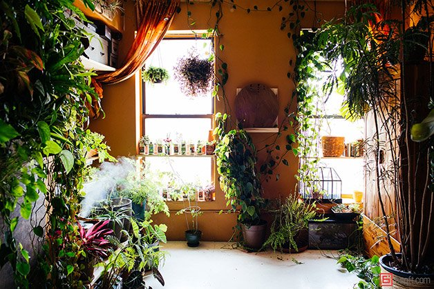 Summer-Rayne-Oakes-Plant-Filled-Apartment-in-Williamsburg-Brooklyn-bedroom-office-2