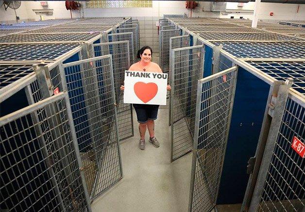 História por trás da foto: veja  como esse abrigo de cães  conseguiu esvaziar tantas gaiolas