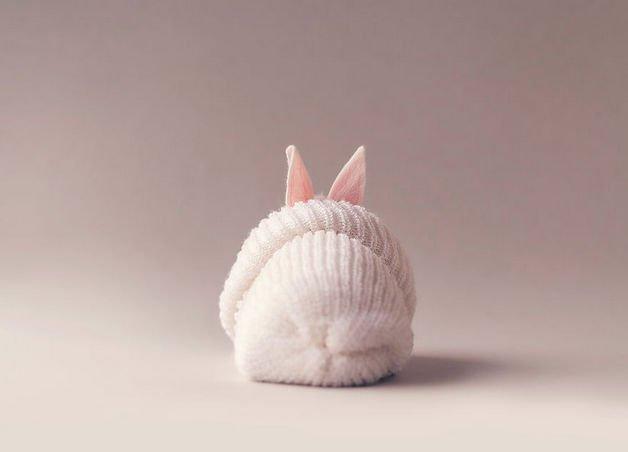 bunny10-57a2766dc5a59__880
