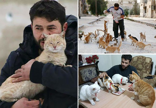 As pessoas estão fugindo da guerra em Aleppo, mas ele decidiu ficar pra cuidar de gatos abandonados
