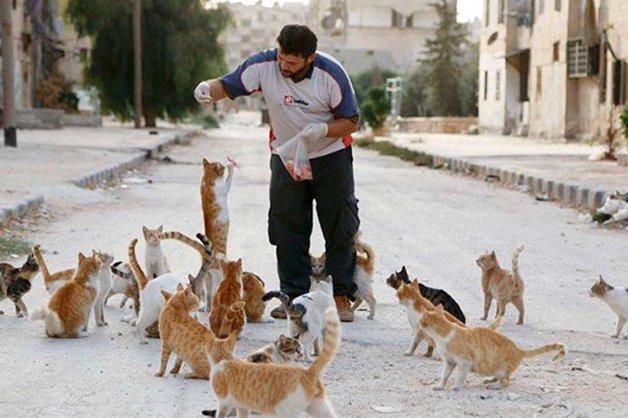 cat-man-aleppo-syria-11