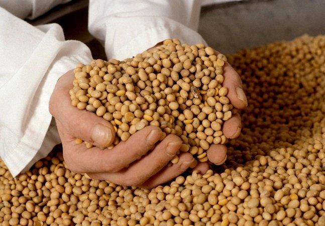 A junção destas duas empresas pode colocar um quarto da comida do mundo nas mãos de apenas um grupo