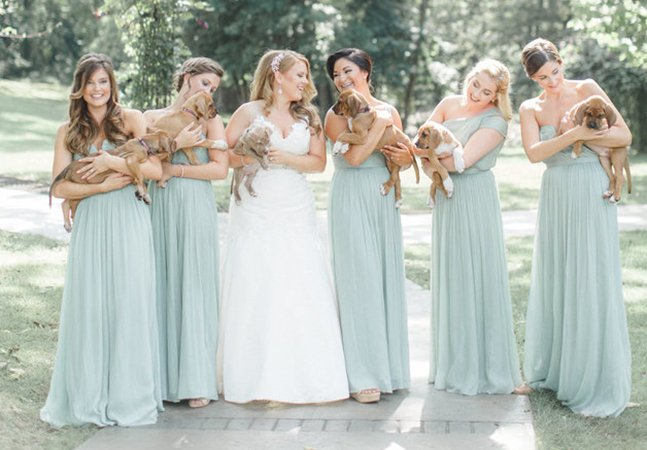 Noiva troca buquê de flores por filhotes resgatados e cria álbum de casamento maravilhoso