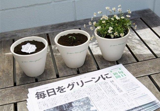 Este jornal ecológico se transforma em uma planta depois de ser lido