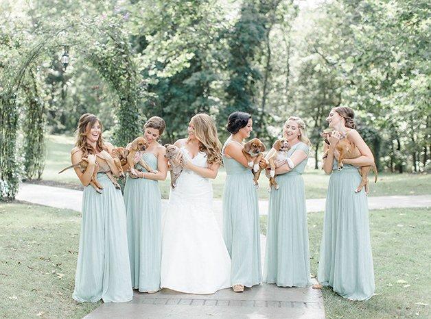 wedding-puppies-instead-flowers-pensylvannia-1