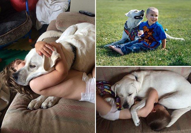 Este cachorro conseguiu acabar com os pesadelos de seu pequeno dono autista