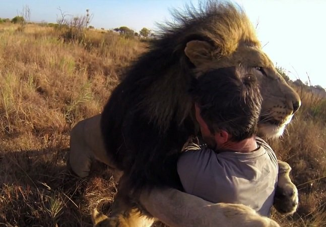 Abraços podem fortalecer seu sistema imunológico, segundo pesquisadores
