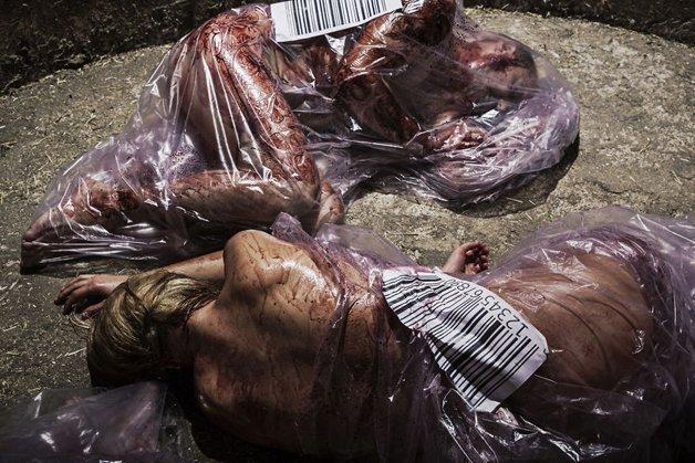 carne11