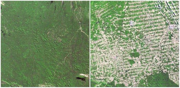 floresta-em-rondonia-brasil-junho-de-1975-e-agosto-de-2009