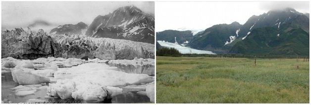 geleira-pedersen-alasca-verao-de-1917-verao-de-2005