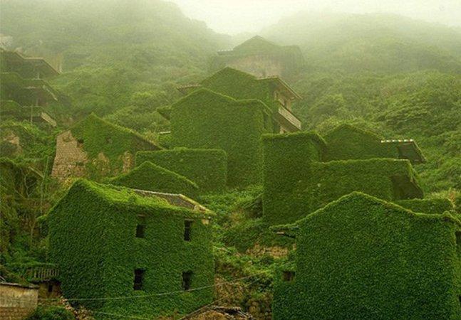 Natureza transforma vila em um gigantesco espaço verde e o resultado é maravilhoso