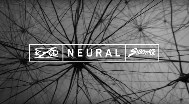 neural3