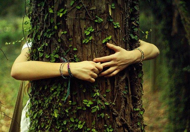 Abraçar árvores pode ajudar a combater depressão, dor de cabeça, hiperatividade e déficit de atenção